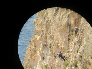 Researchers of the Malta Seabird Proect abseiling Ta Cenc cliffs, Gozo
