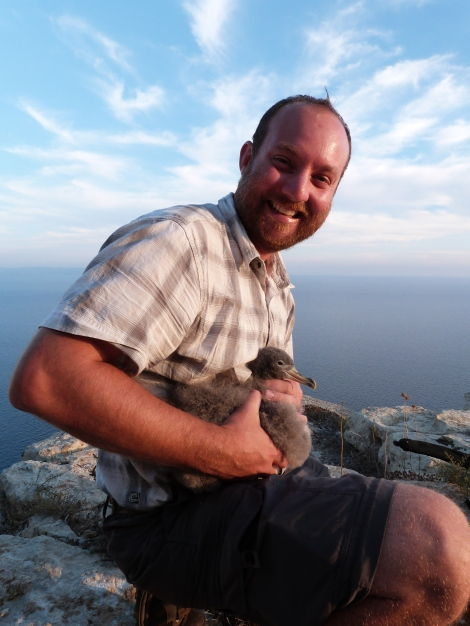 Ed Drewit with ringed Scopoli's Shearwater Chick